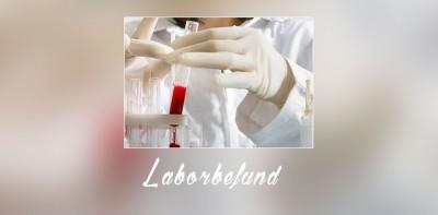 laborbefund2